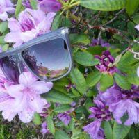 Mørkegrå solbriller
