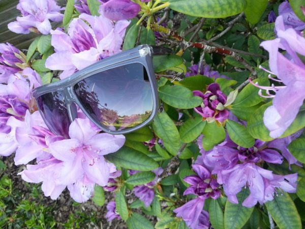 Mørkegrå solbriller 2