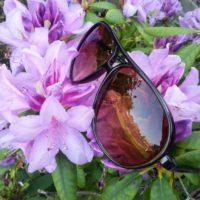 Brune solbriller