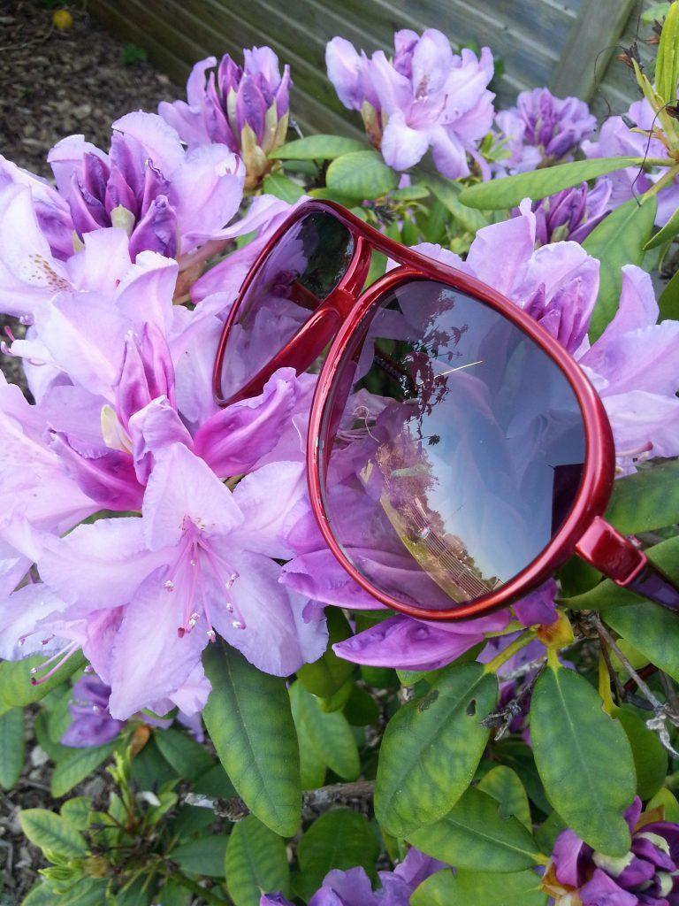 Røde solbriller med sort glas