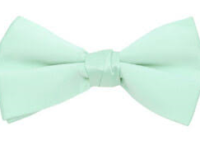 Mintgrøn butterfly