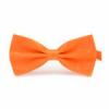 Neon Orange Butterfly.